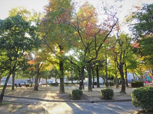 西条中央公園 散歩コース01