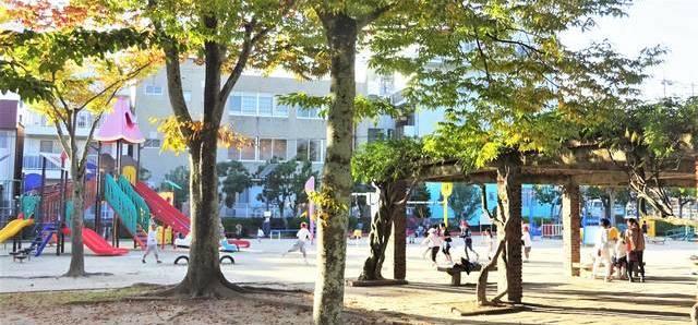 西条中央公園 広場に遊具02