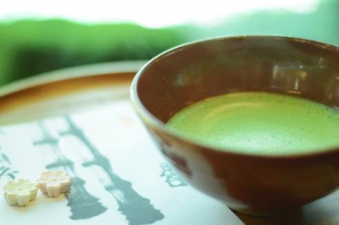 広島 縮景園が2時間早朝開園、朝の無料お茶席体験も