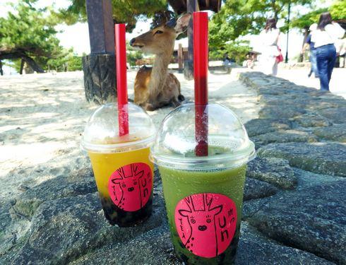 宮島の鹿のフンに見立てたタピオカ抹茶ミルクティー、鹿のウンティー
