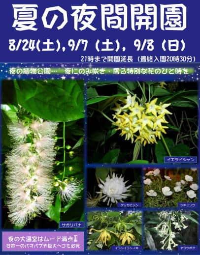 花と光のページェント2019 夜間開園、広島市植物公園にて