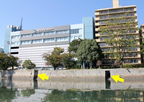 川の多い広島らしい、雁木のある川のほとりの風景