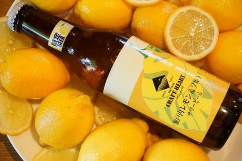 瀬戸内レモン&ソルトビール、福山クラフトハートブルワリーから