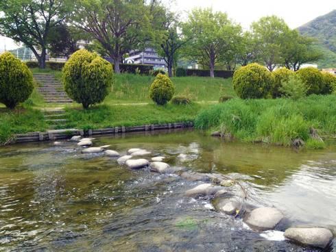 せせらぎ公園 川のアップ