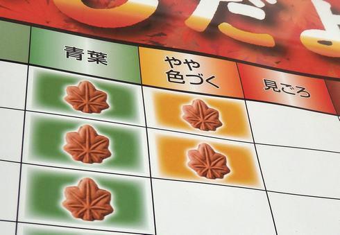 広島もみじだより2019 もみじ饅頭で紅葉おしらせ