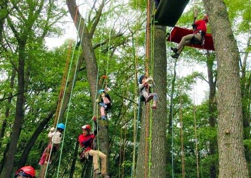 ツリークライミングなど、自然と遊ぶ「森の感謝祭」入園無料