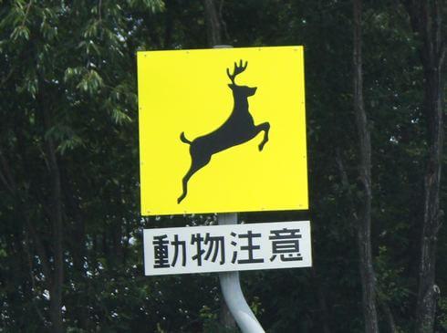 動物注意、飛び出し標識看板 鹿(山陽自動車道)