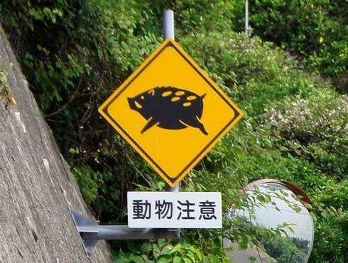 動物注意、飛び出し標識看板 瀬戸田のイノシシ