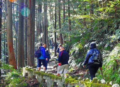 三段峡の魅力的な風景と紅葉6