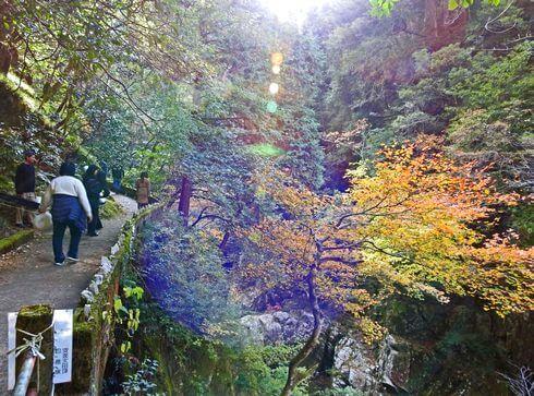 三段峡の魅力的な風景と紅葉3