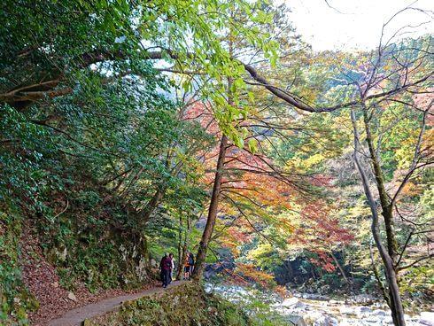 三段峡の魅力的な風景と紅葉8