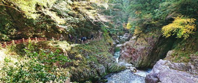 三段峡の魅力的な風景と紅葉