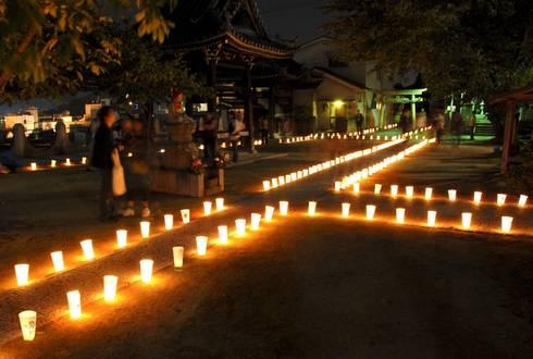 宝土寺 灯りまつり