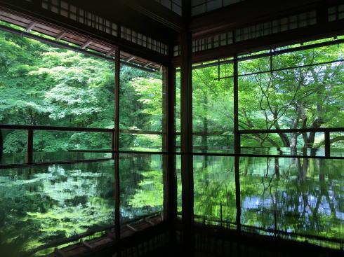 神社仏閣ランキング2019 瑠璃光院
