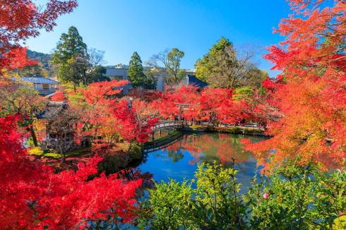 神社仏閣ランキング2019 永観堂禅林寺
