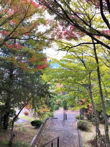 安芸高田市 丸山公園 園内の様子(紅葉)