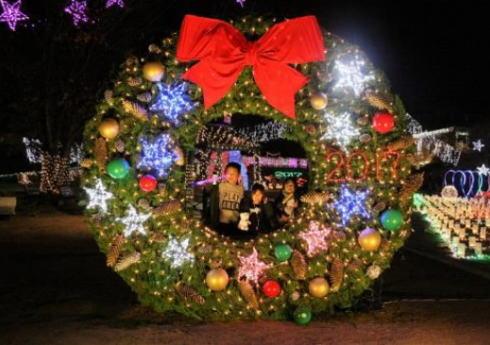 花と光のページェント2019、植物公園のクリスマスイルミネーション