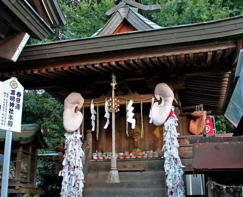 3月3日は耳の日!因島・大山神社で耳祭り、ホラ貝の奉納やサザエ供養祭も