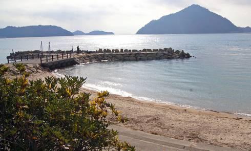 野賀海水浴場 中央の堤防