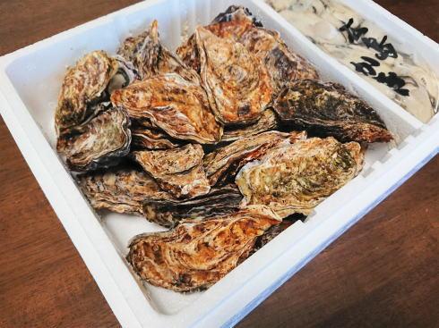 殻付き牡蠣も、自宅で簡単!カキの食べ方と冷凍方法、生食用と加熱用の違いなど