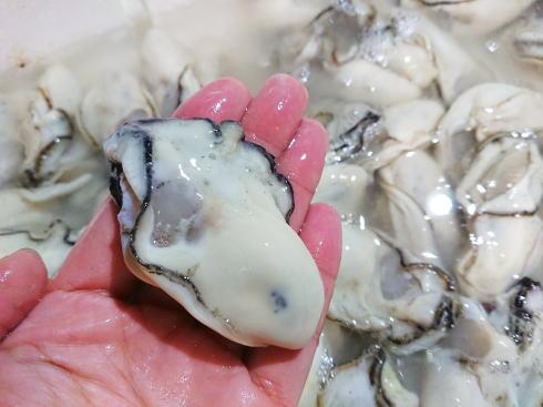 牡蠣の保存方法 画像2