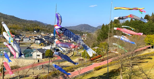 熊野町 深原地区公園、春には桜やツツジ・芝桜なども