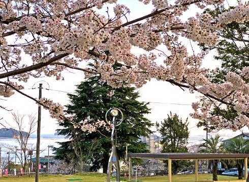 宮浜温泉グラウンドゴルフ場の時計台とベンチ
