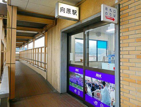 JR向原駅の入口