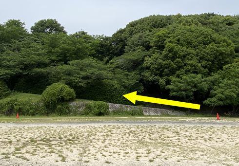 広島市 牛田総合公園 ばら園への道