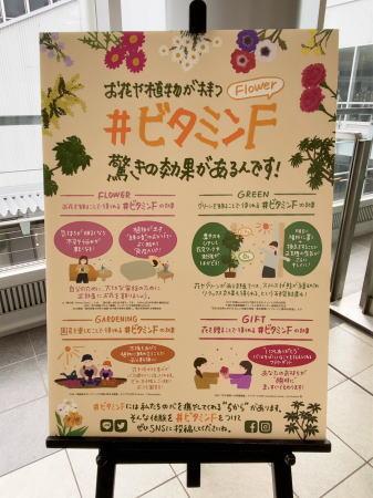 広島駅 コロナの影響受ける花業界から花の展示3