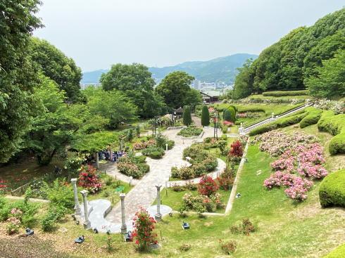 広島市 牛田総合公園バラ園 全景画像