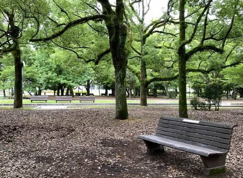 広島平和記念公園 ベンチ01