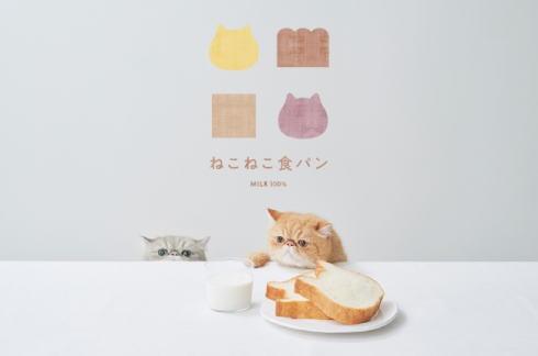 ねこねこ食パン・チーズケーキ、ゆめタウン広島でも発売へ