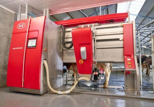 搾乳ロボットで酪農家の負担軽減、県立広島大学の研究で