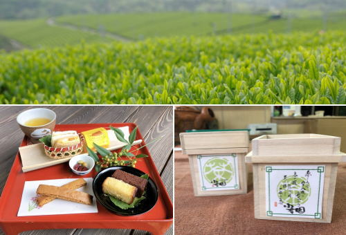 茶畑で愉しむアフタヌーンティー!広島・上下町で