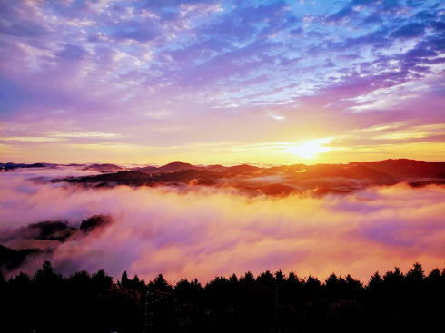 タワー展望室で360度 雲海撮影・カフェも!神石高原町の絶景イベント
