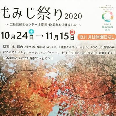 広島県緑化センターもみじ祭り、県内一のオオモミジ・キッチンカー出店も