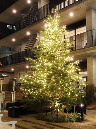 広島アンデルセン シンボルツリーがクリスマス仕様に
