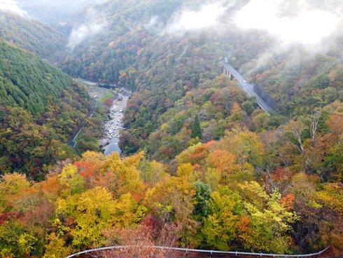 温井ダムの紅葉、2020年11月3日の様子