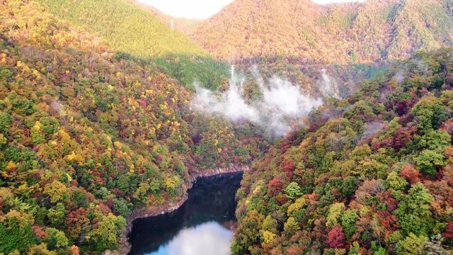 温井ダムと瀧山峡大橋周辺の紅葉