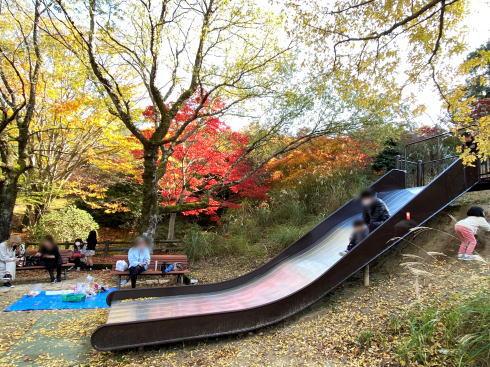 広島県緑化センターの紅葉と遊具