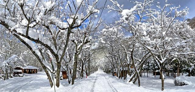大鬼谷キャンプ場の冬は、白銀の世界