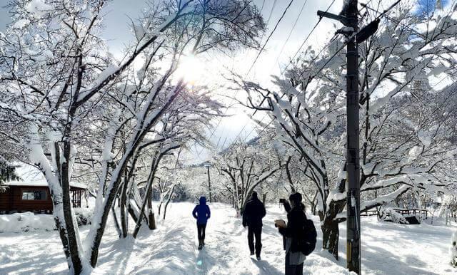 美しき広島の北国・庄原の、冬の雪景色ドライブ