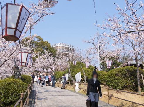 千光寺公園 展望台リニューアル 立ち入り禁止エリア3
