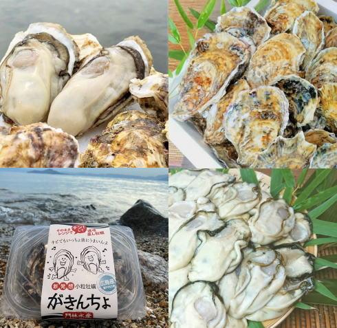 江田島の牡蠣が主役!えたじまーけっと開催