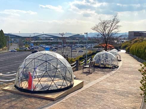 八天堂ビレッジ ドーム型テント