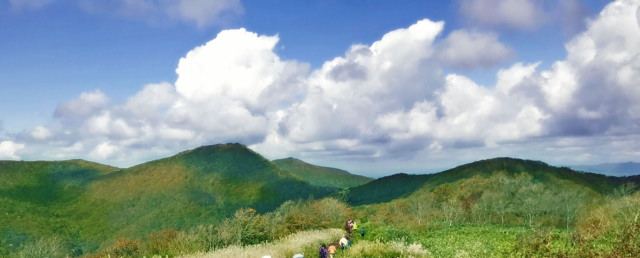 新緑の比婆山 お散歩登山(貸切バスツアー)