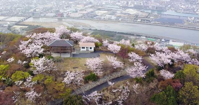 筆影山(ふでかげやま)の桜と山頂展望台