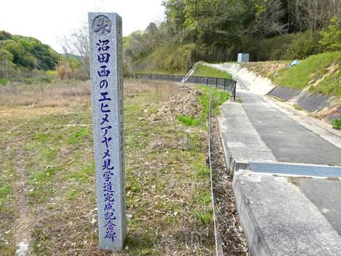 沼田西のエヒメアヤメ自生南限地帯 記念碑