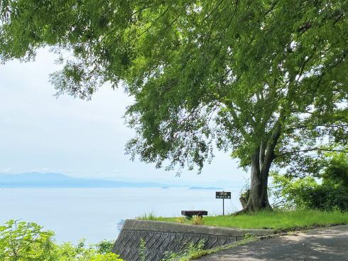 下蒲刈島「潮流みはらし台」画像2